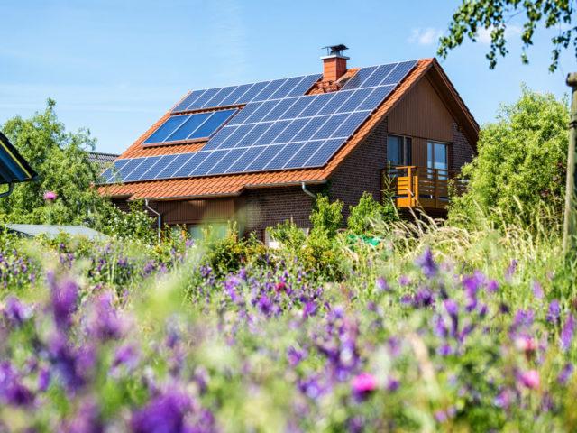 litige photovoltaique